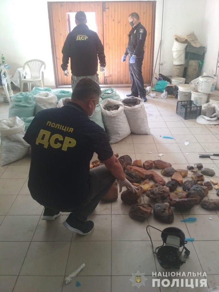На Рівненщині поліціянти вилучили рекордну партію бурштину на 1,2 мільйона доларів_1