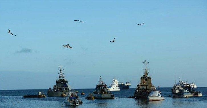Екологи б'ють на сполох — риболовецькі судна КНР спустошують світовий океан_1