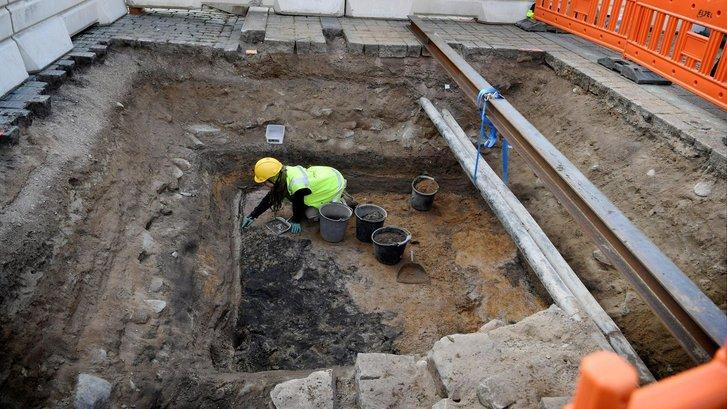 Археолог досліджує місцевість