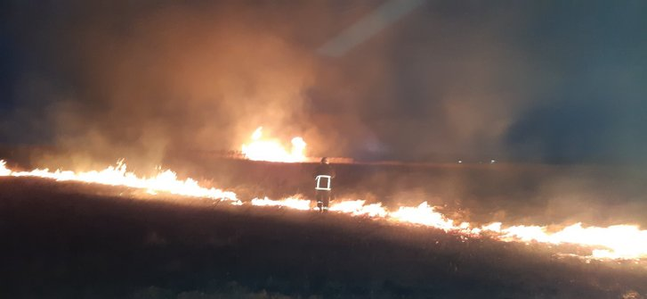 На Полтавщині за день вигоріло 14 га території_1