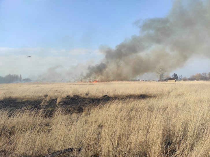На Полтавщині за день вигоріло 14 га території_2