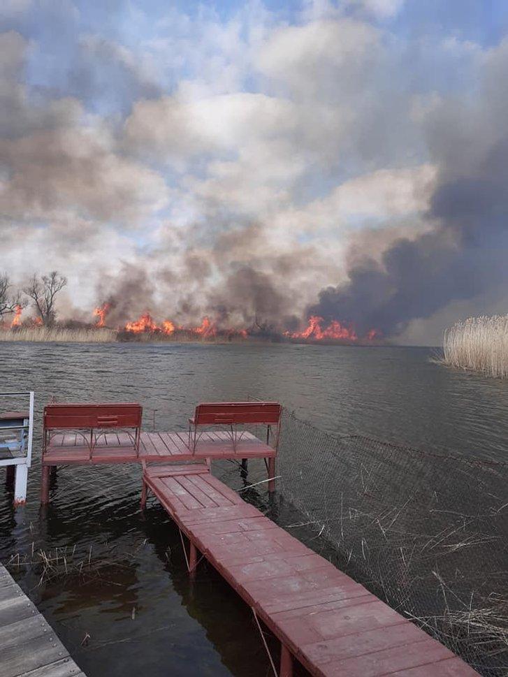 Прийшла весна і на Херсонщині запалали плавні_2