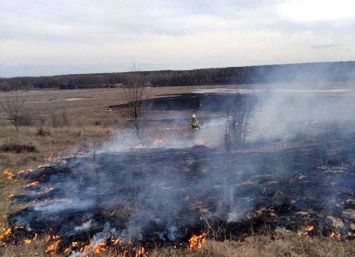 Поліція Полтавщини не спіймала жодного палія трави_1