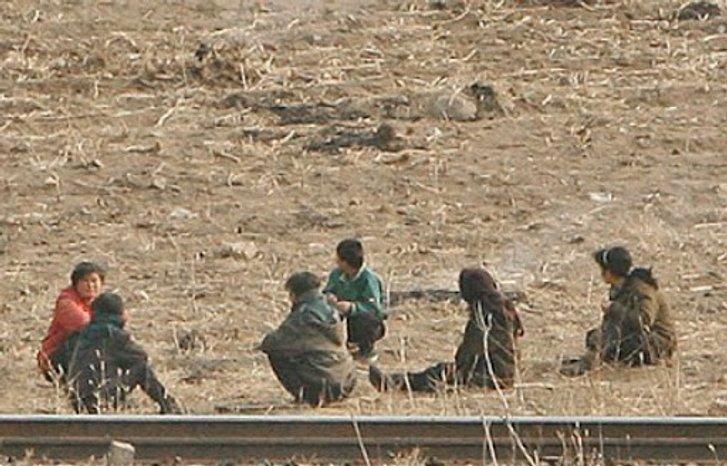 Голодні корейські селяни на одному з полів у КНДР (наші дні)