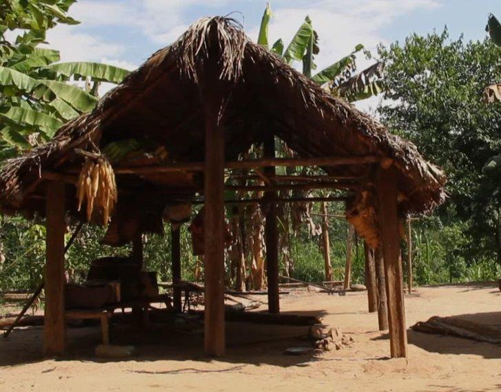 У амазонських аборигенів зафіксували уповільнення старіння_1