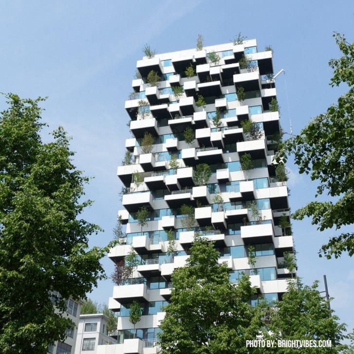 Унікальний вертикальний ліс створили в Нідерландах_7