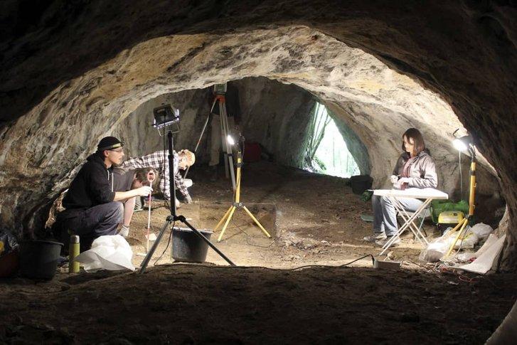 Археолоґи знайшли у Польщі рештки карельської дівчинки родом із Фінляндії_1