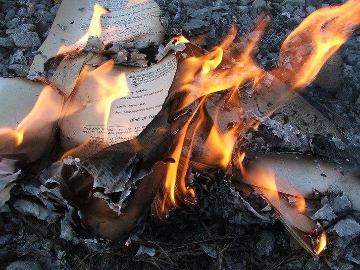 Спалені дитячі книги у провінції Онтаріо (наші дні)