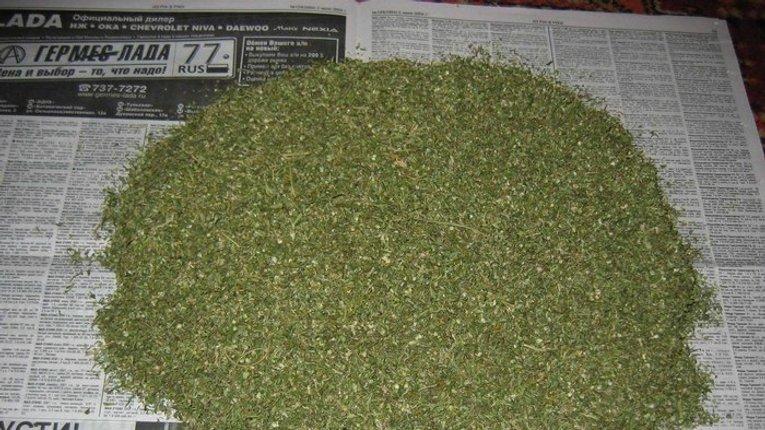 У Кременчуці затримали парочку наркодилерів