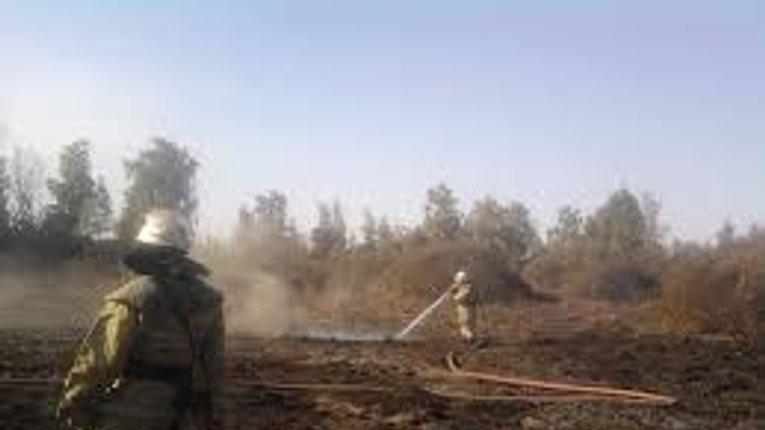 Вогнеборці Полтавщини загасили чергове займання торф'яних покладів