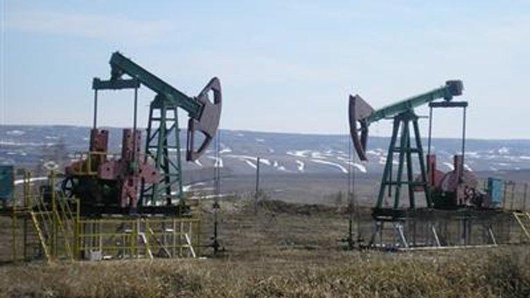 Екс-міністр Януковича в бігах відсудив у держави полтавські нафтогазові площі