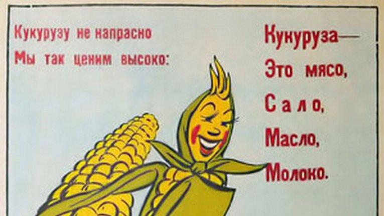Полтавщина – королева кукурудзи. По хлібу і «сімкам» – віце