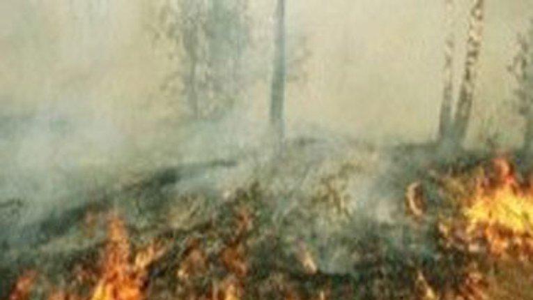 Невідомий підпалив торф'яники на Полтавщині