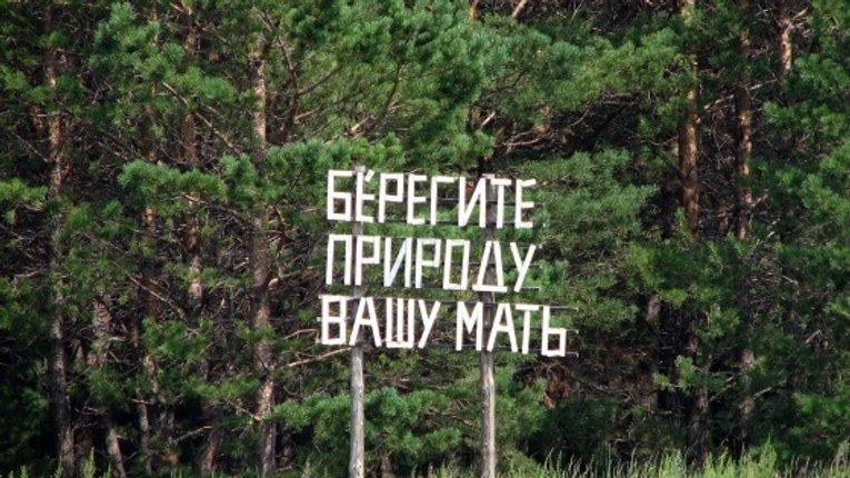 500 га лісів щорічно вирубують на Полтавщині