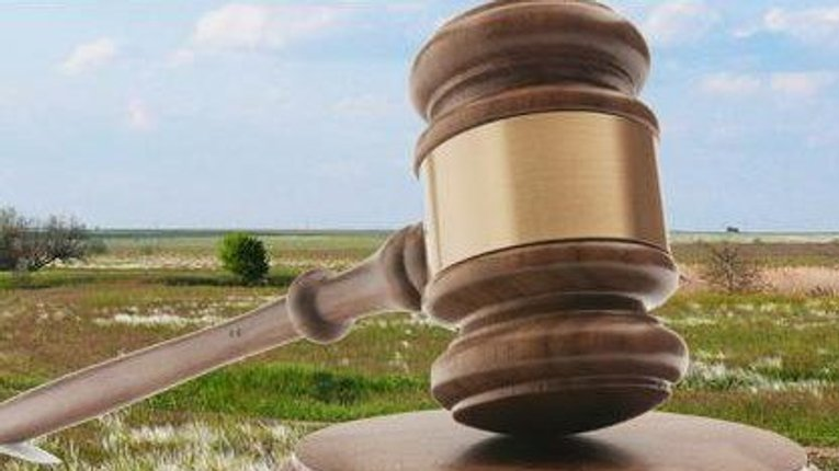 182 га державних земель Полтавщини віддадуть в оренду на аукціонах
