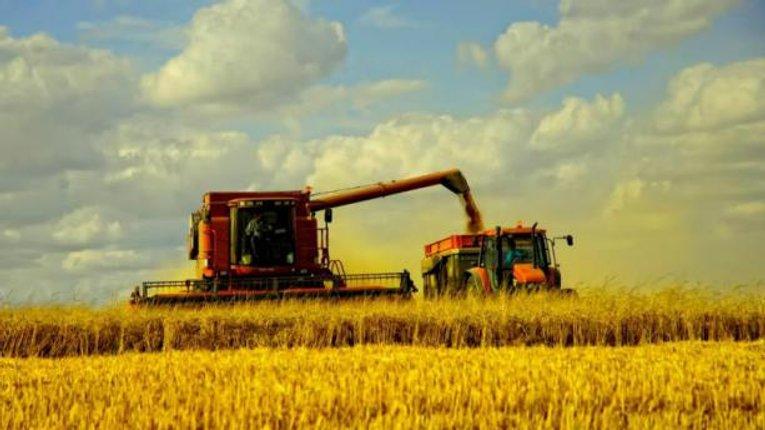 Полтавщина – друга за виробництвом аграрної продукції в Україні