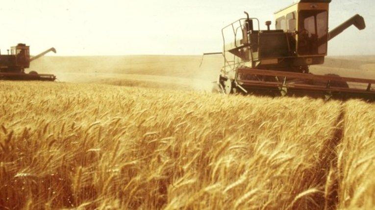 Інвестиції в аграрний сектор зросли на 57,9%
