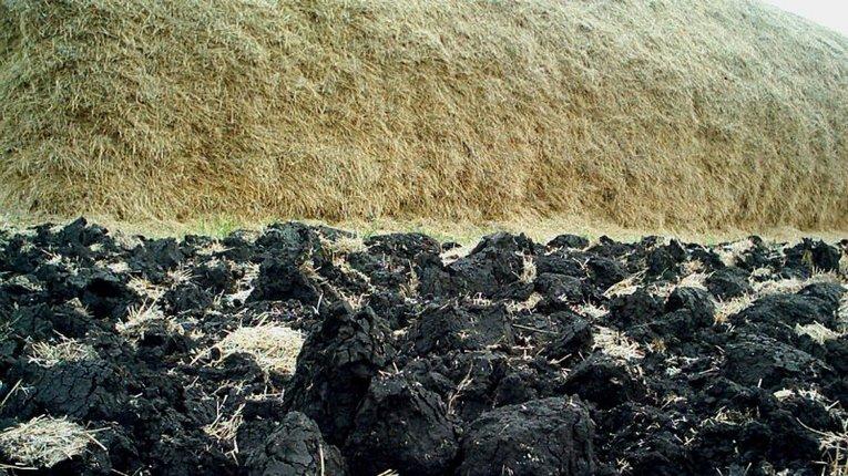 15 млн га українських земель деградували – експерт
