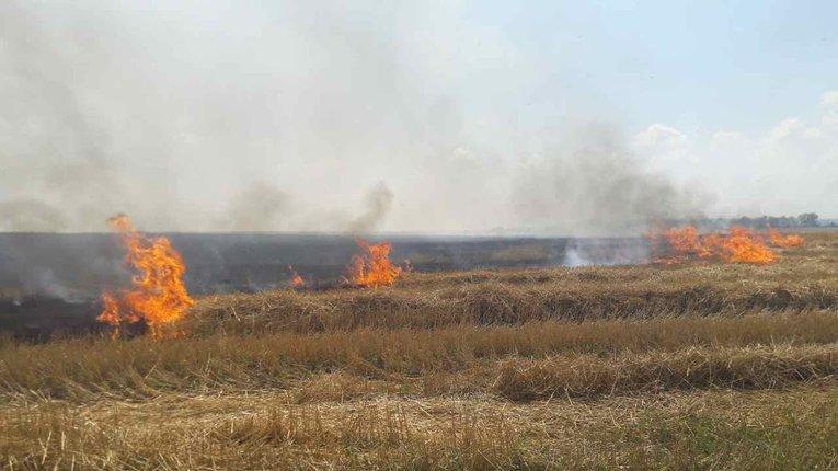 На Полтавщині горять поля