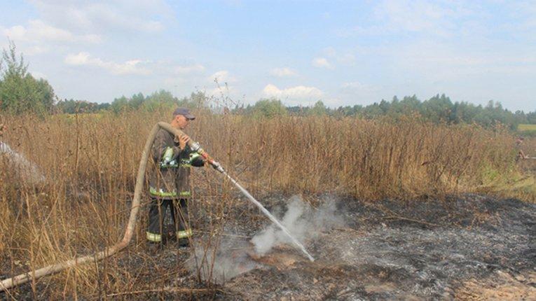 Вогнеборці загасили палаючі торф'яники в Оржицькому районі