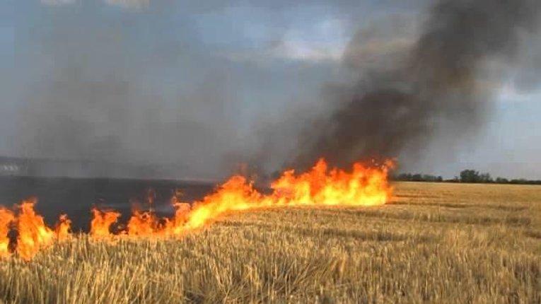 Попередження про високий рівень пожежної небезпеки на Полтавщині