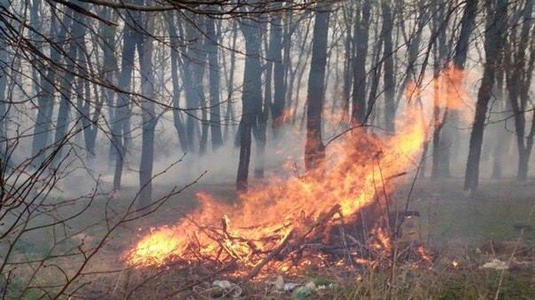 Решетилівська міська рада нагадала про штрафи за самочинне спалення органічних відходів