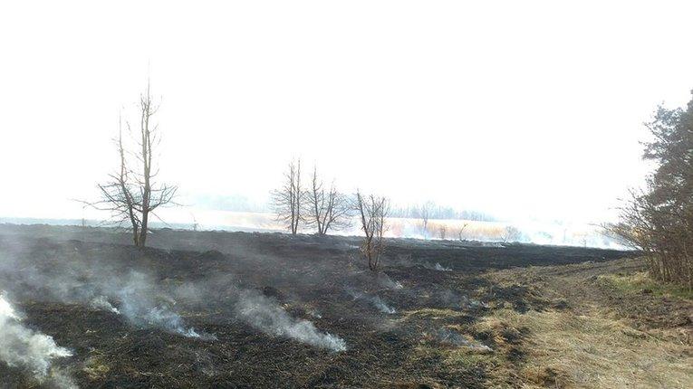 У Семенівському районі трапилася чергова пожежа на відкритій території