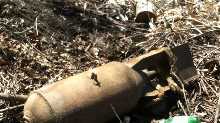 У Миргородському районі у лісі знайшли авіаційні бомби