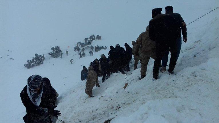 В Туреччині нарахували вжепонад 20загиблих внаслідок сходження лавин