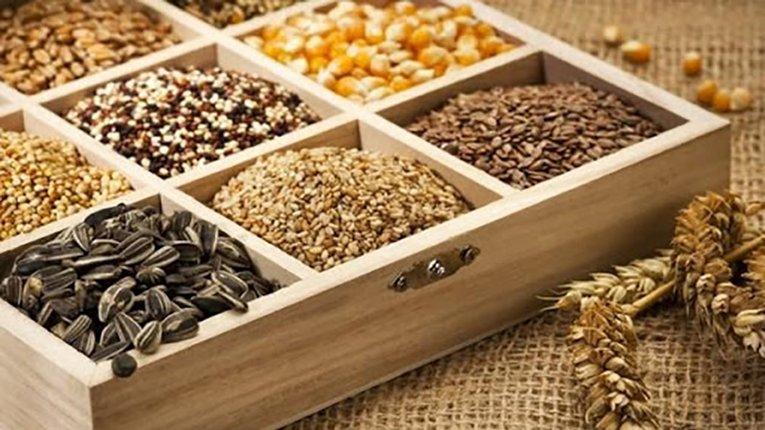 Відсутність насіння в українських аграріїв призведе до масштабного зростання цін на ринку