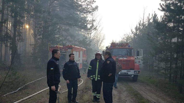 На Полтавщині горить 8 гектарів соснового лісу