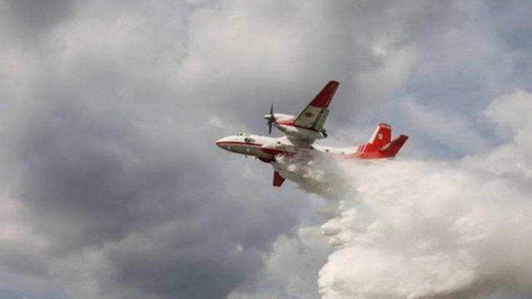 Дощ допоміг зупинити пожежу в Чорнобильській зоні, але ще треба загасити тління