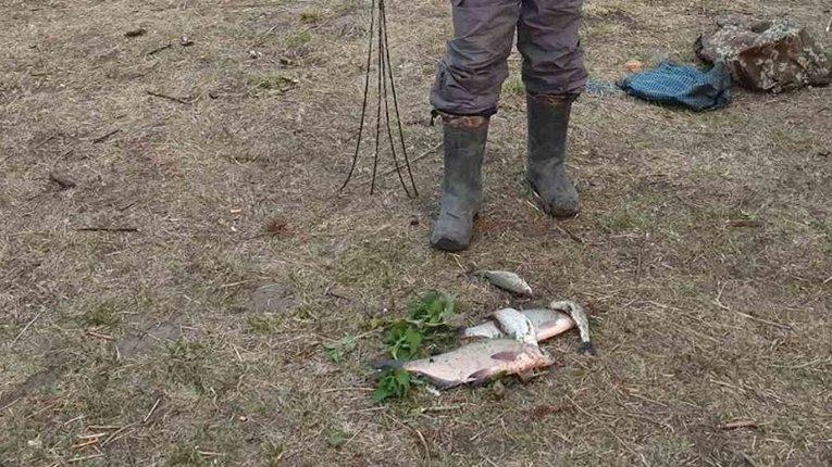 В одному з районів Полтавщини викрито грубі порушення правил рибальства