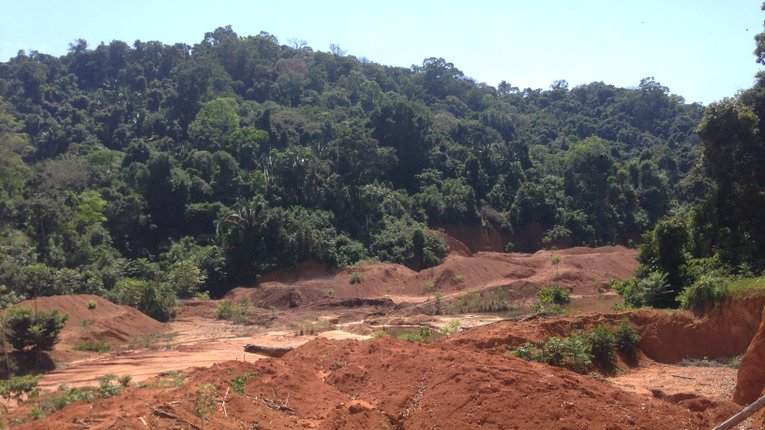 Влада Нікараґуа сприяє незаконному захопленню земель
