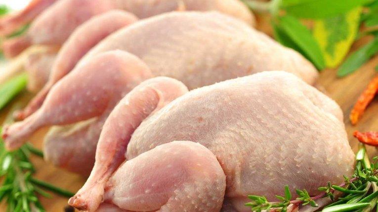 Українська курятина може опинитися під санкціями «дружнього» Євросоюзу