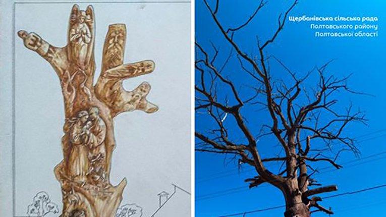 Віковий дуб стане мистецькою окрасою Щербанів