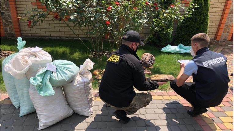На Рівненщині поліціянти вилучили рекордну партію бурштину на 1,2 мільйона доларів