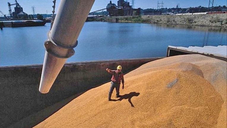 Встановлено новий рекорд: з України продовжують вивозитиурожай зернових