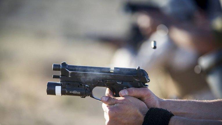 Голова комітету ВР з нацбезпеки виступив за легалізацію короткоствольної зброї