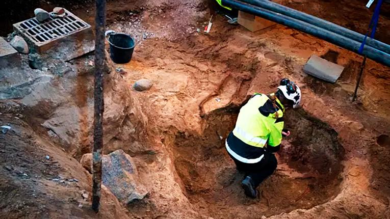 Приголомшливі знахідки здивували археологів Фінляндії