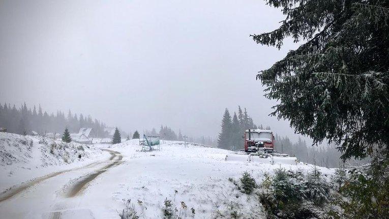 Карпати вкрило снігом