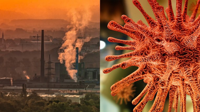Забруднене повітря заважає організму протистояти COVID-19, — науковці