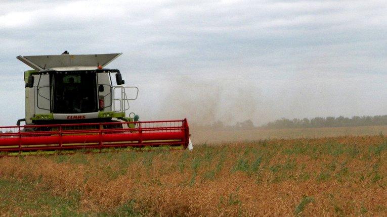 В уряді України підбили підсумки цьогорічних жнив: зібрано понад 60 млн т зерна
