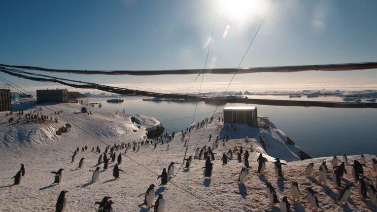 Українці в Антарктиді святкують Новий рік у розпал літа