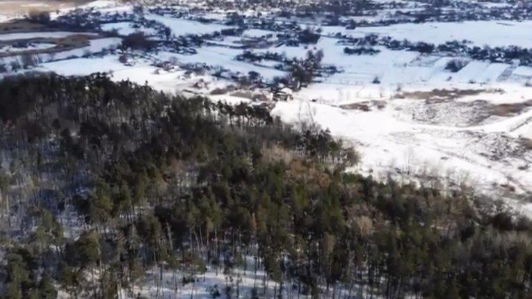 Селяни Миргородського району вимагають покарати «лісову мафію»