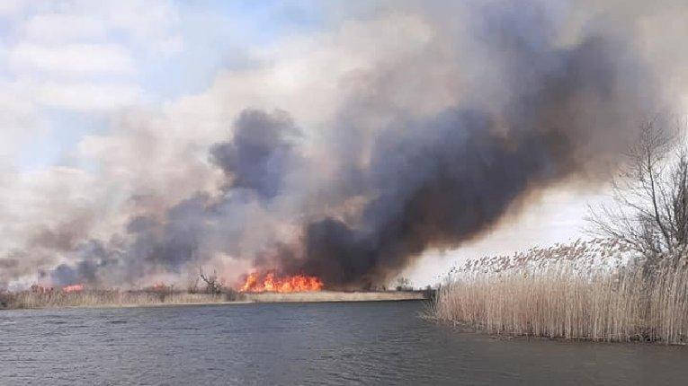 Прийшла весна і на Херсонщині запалали плавні