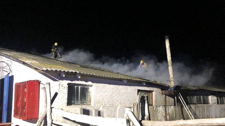Дві сотні корів врятували у пожежі на Полтавщині