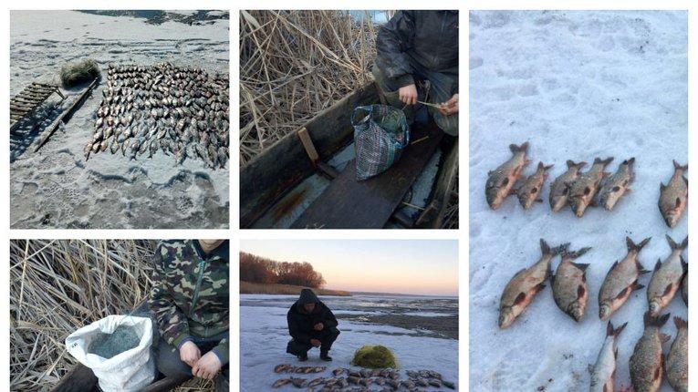 На Полтавщині браконьєри наловили риби на 36 тисяч гривень
