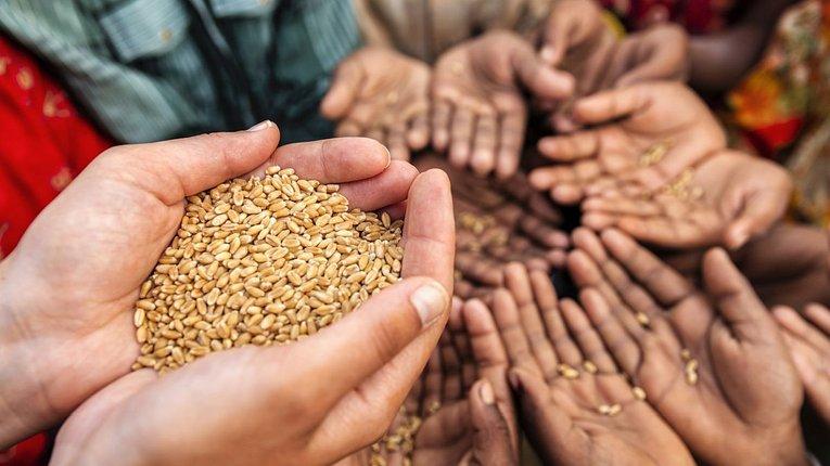 Світові ціни на продовольство будуть і надалі зростати,– ООН