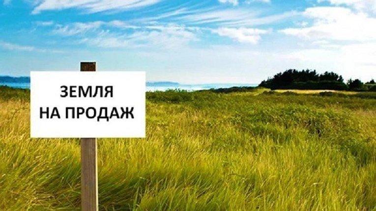Вітчизняні аграрії працюють у збиток, їм немає за що купити землю, — нардеп Івченко
